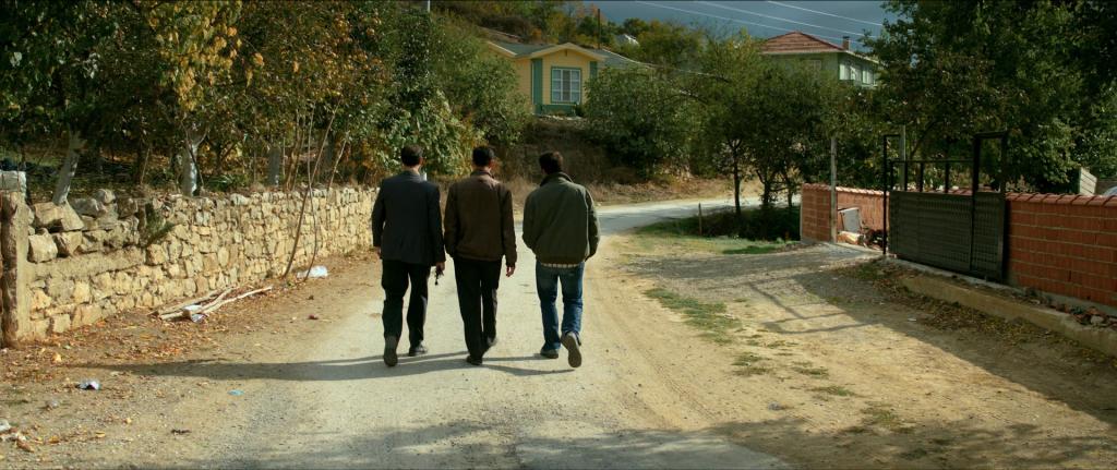 עץ האגס הפראי שוטטות קולנוע סרט טורקי